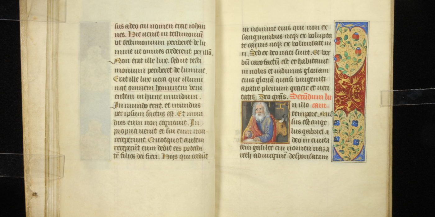 Illuminated Manuscripts 1