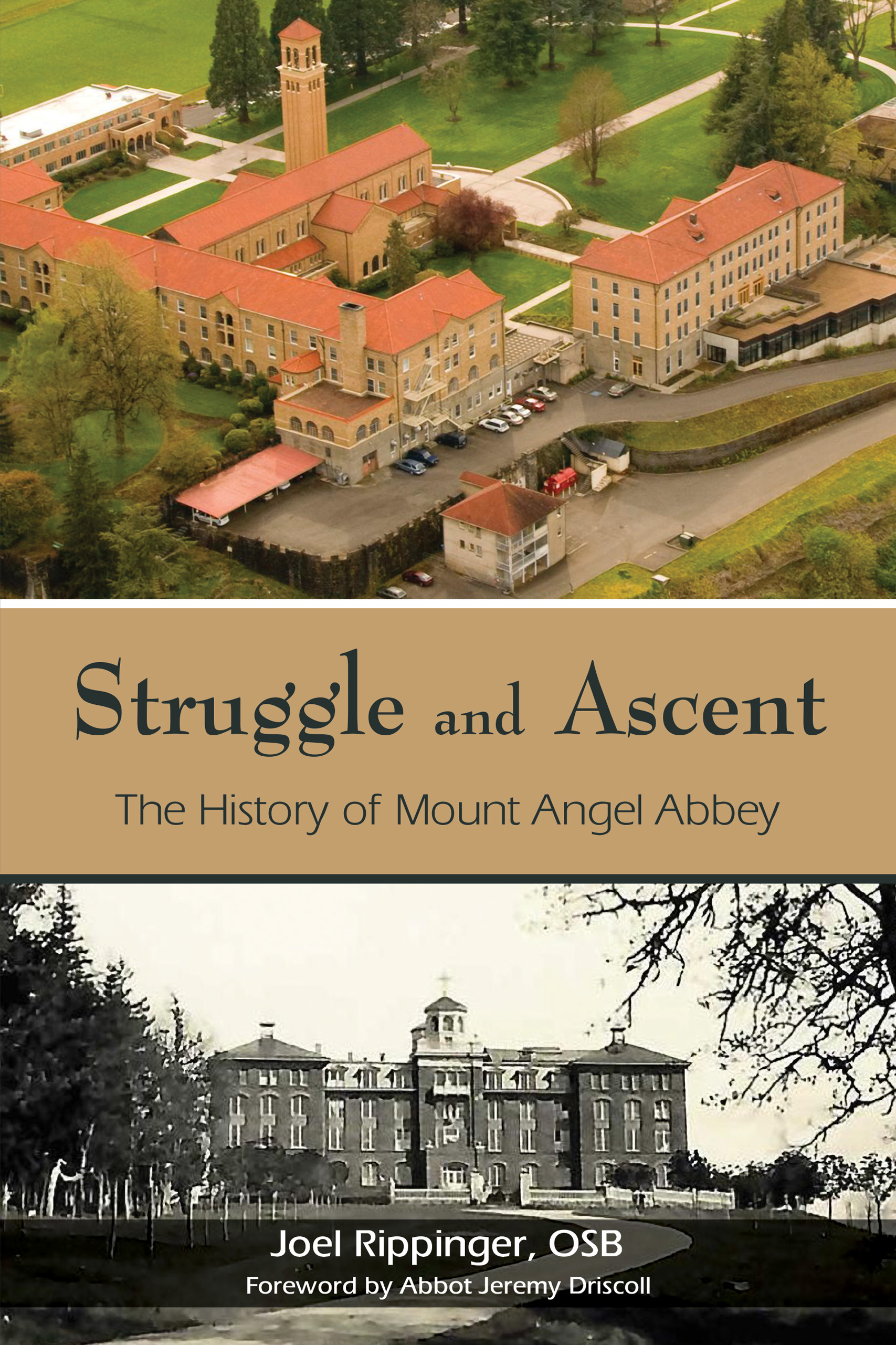 Struggle and Ascent by Joel Rippinger, O.S.B and introduction by Abbot Jeremy Driscoll, O.S.B.